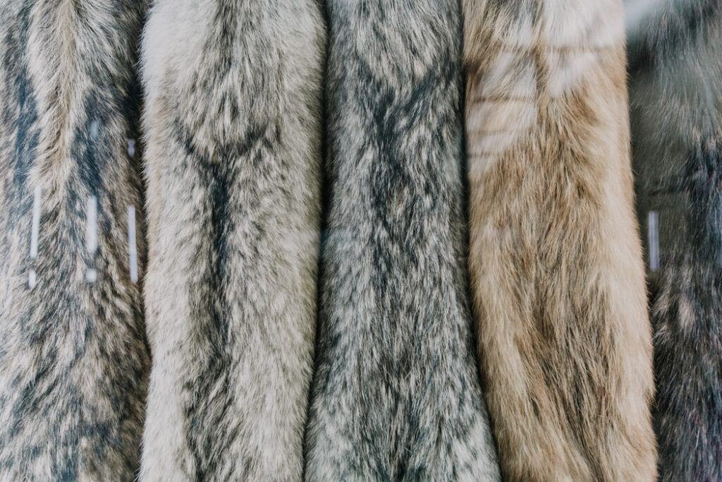 For Fur or Faux Fur